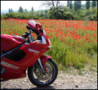 Book a motorcycle tour in Italy